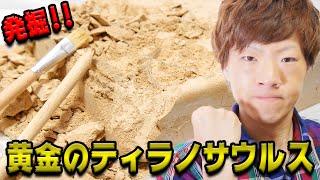 黄金の恐竜の化石発掘して組み立ててみた。 thumbnail