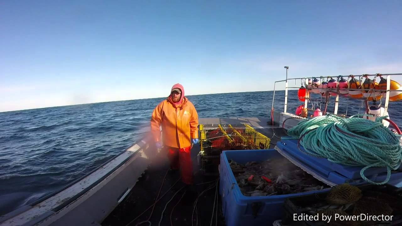Maine lobster trawl fishing 2016 youtube for Maine out of state fishing license