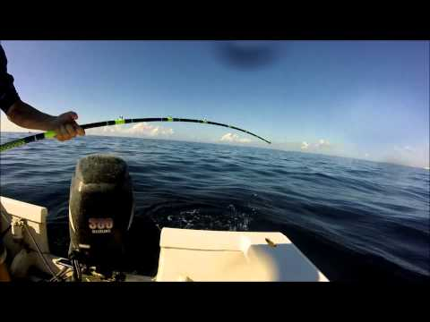 Jupiter Florida offshore fishing
