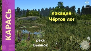 Русская рыбалка 4 - река Вьюнок - Неплохой карась в болоте