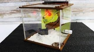 Neue Ameisen und das erste Jumanji TM Formicarium mit Licht der Welt - Review