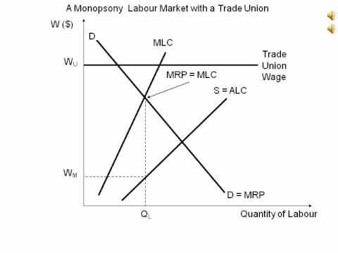 Animated diagram showing a labour market with a Monopsony and Trade union