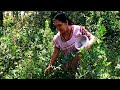 MARCO FLORES Y LA JEREZ- ORDEÑANDO LA VACA - YouTube