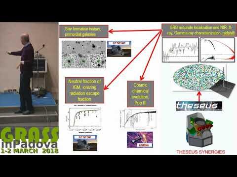 Amati L. - THESEUS: a future key mission for multi-messenger astrophysics