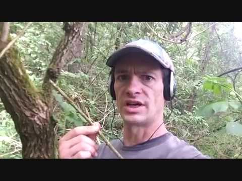 AMAZING DISCOVERY!!! How To Metal Detect With A Stick (53)