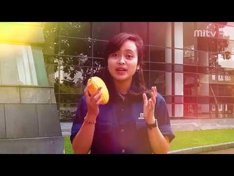 Belimbing island tayangan Makara TV UI