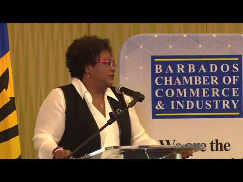 We can and we shall by Mia Amor Mottley