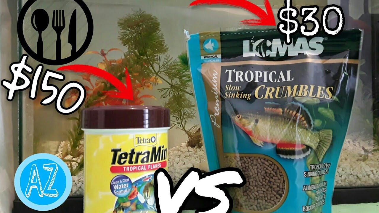 Comida para peces barata vs cara pellets vs hojuelas for Comida congelada para peces
