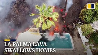 Download Thousands flee as lava from volcano on Spain's La Palma island swallows homes