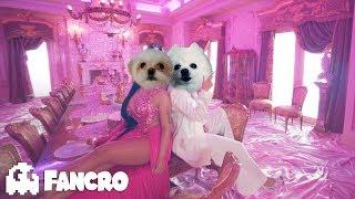 Baixar KAROL G, Nicki Minaj - Tusa (Cover Perros)