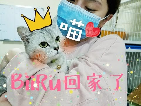 譚杏藍 Hana Tam - BIIRU 與我 [愛回家篇]