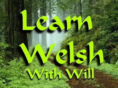 Learn Welsh with Will Ep10: Excuse me, Please,Thank you and Welcome