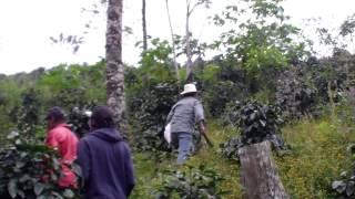 2ème terrain - entre Ocotepeque et Santa Rosa de Copan
