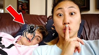 HUGE SPIDER IN BED PRANK ON CARTER SHARER!!