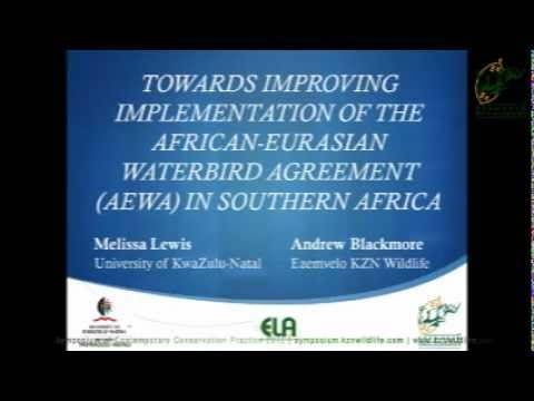 Melissa Lewis - Improving implementation of African-Eurasian Waterbird Agreement in Southern Africa