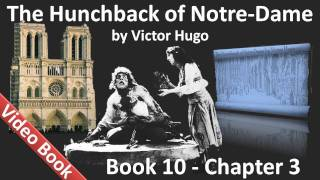 Book 10 - Chapter 3 - The Hunchback of Notre Dame by Victor Hugo - Long Live Mirth