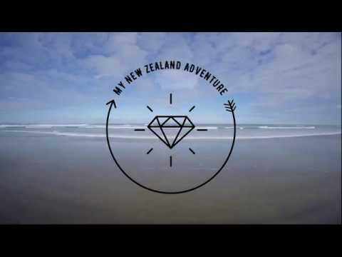 My New Zealand Adventure (North Island) With Stray