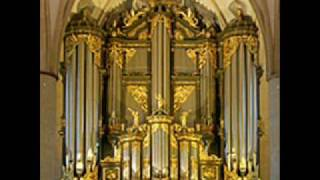 JS Bach Concerto in d minor Bwv 596 after A. Vivaldi .wmv