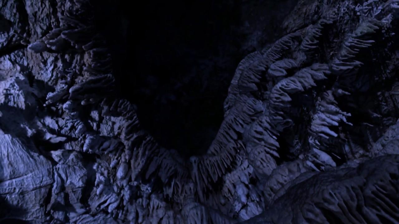 THE MAGIC DOOR - Saturnine Night (Official Video)