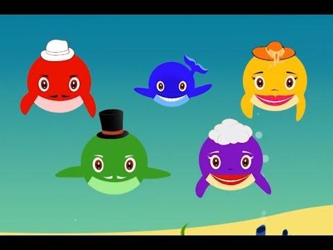 Baby Whale Doo doo doo Go Hunt In The Sea | Shorter Version | Sea Animals Song For Kids