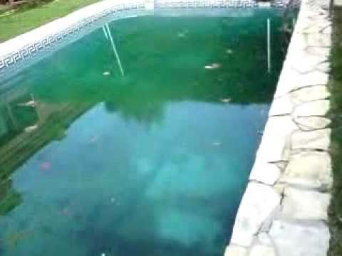 COMO SE LIMPIA UNA PISCINA 619-164-359 - YouTube