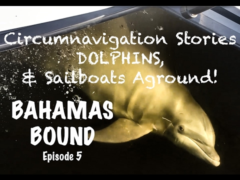 Circumnavigation Stories, Dolphins, & Sailboats Aground! - Bahamas Bound Episode 5