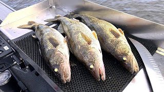 Spring Fishing Tips, Tricks, and Tactics! (Quarantine Addicted Fishing Live)