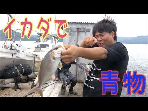 #2 いろんな魚が大爆釣!!イカダから青物も連発!