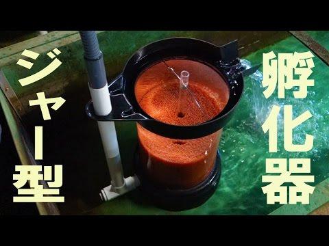ハッチングジャー孵化器 Hatching Jar
