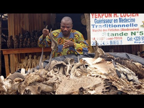 Inside the World's Biggest Voodoo Market