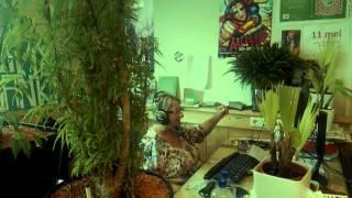 Zwarte Cross lied 2015 - Kom van die bank! (ft. Umeme Afrorave & Siggy Leeways)