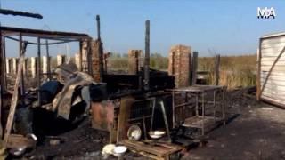 Свыше 150 кошек и собак сгорели в кемеровском приюте