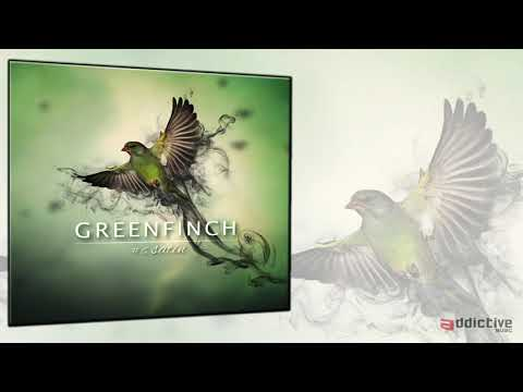 Youtube: Greenfinch – Satin (From soul to souls)