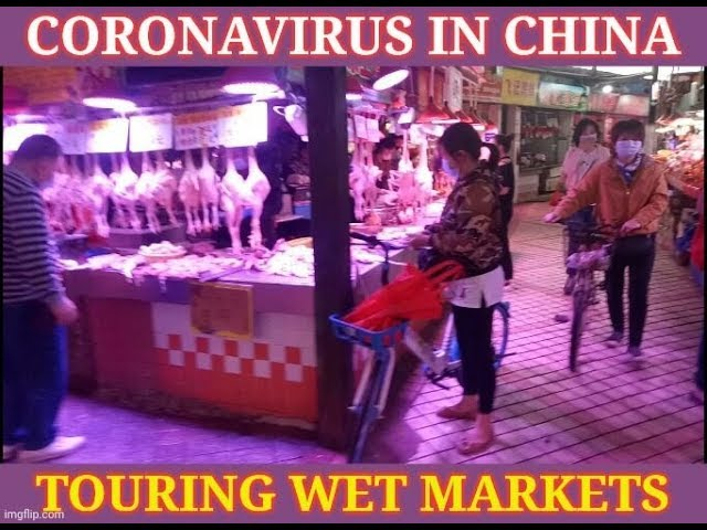 Coronavirus: Wet Markets In China During The Covid-19 Outbreak