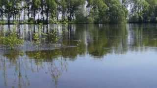 May`s of nine on Desna river in Ukraine ...(I created this video with the YouTube Video Editor (http://www.youtube.com/editor), 2013-06-10T08:04:48.000Z)