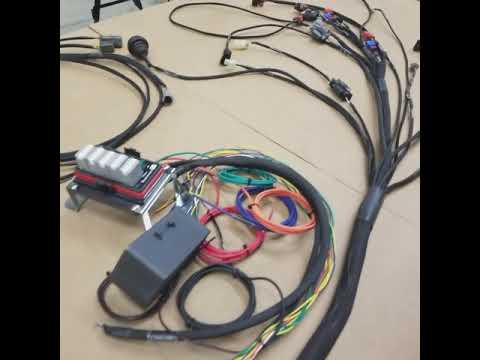 Universal / Standalone CA18DET Wiring Harness - PRO SERIES