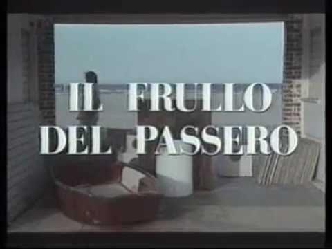 IL FRULLO DEL PASSERO (1988) Con Ornella Muti - Trailer Cinematografico