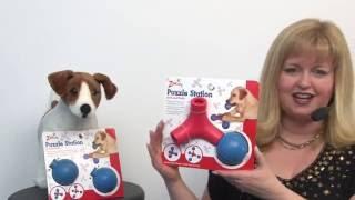 Zanies Puzzle Station Jack & Ball Dog Toy
