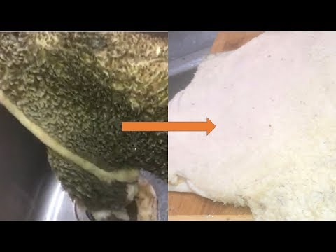 How to Clean your Tripe Meat / Shaki