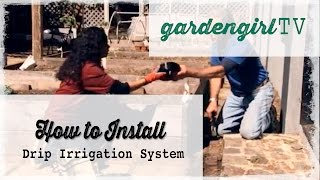 Vegetable Gardening: How To Install A Drip Irrigation System