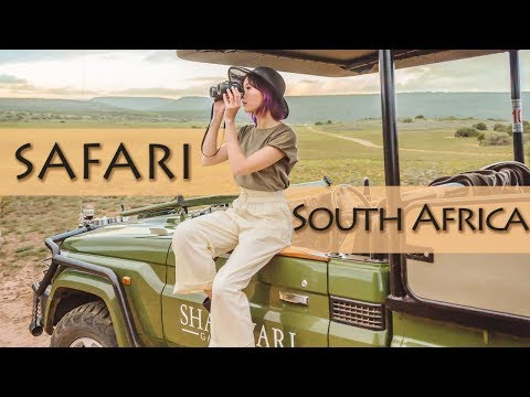 Travel Diary: Best Safari Experience In South Africa | Camille Co