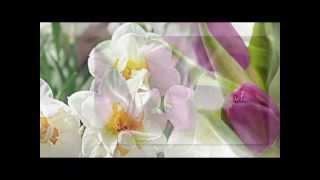 Download Ф. Шопен вальс № 10 Весне навстречу.. Mp3 and Videos