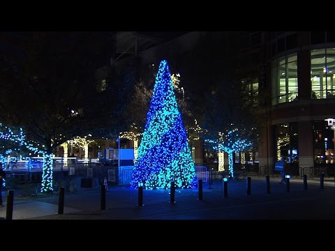 New Holiday Tree in Rockville Town Square