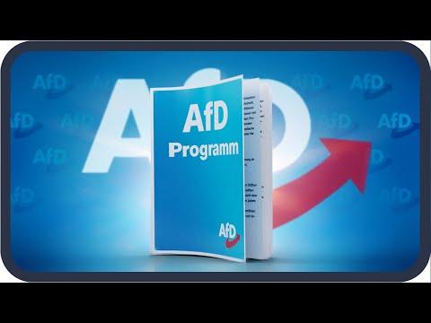 Das Wahlprogramm der AfD erklärt | Bundestagswahl 2021