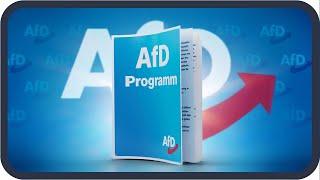 Das Wahlprogramm Der AfD Erklärt Bundestagswahl 2021