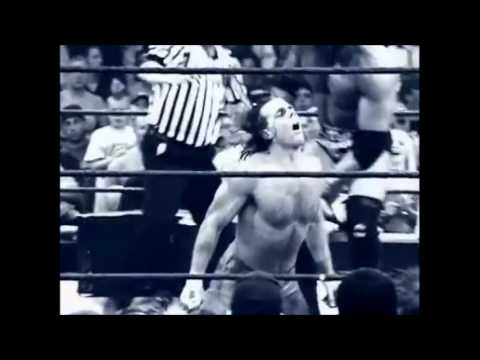 Survivor Series 2002: Elimination Chamber  Promo