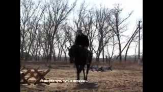 Школа Верховой Езды как правильно поворачивать лошадь(Видео подготовлено для блога http://Kasyama.ru Это видео - тренировка с субтитрами для тех, кто хочет лучше понимать..., 2012-03-27T12:55:49.000Z)
