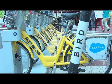 Will Bird 'cruisers' join electric scooters, bike share in Indy?