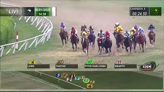 Vidéo de la course PMU PREMIO PURO GUSTO