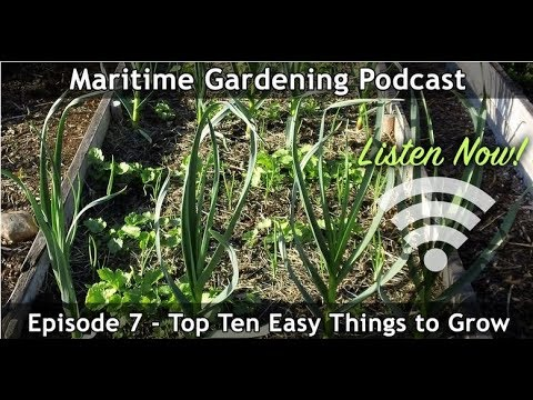 MGP Episode 7: Top Ten Easy Things to Grow